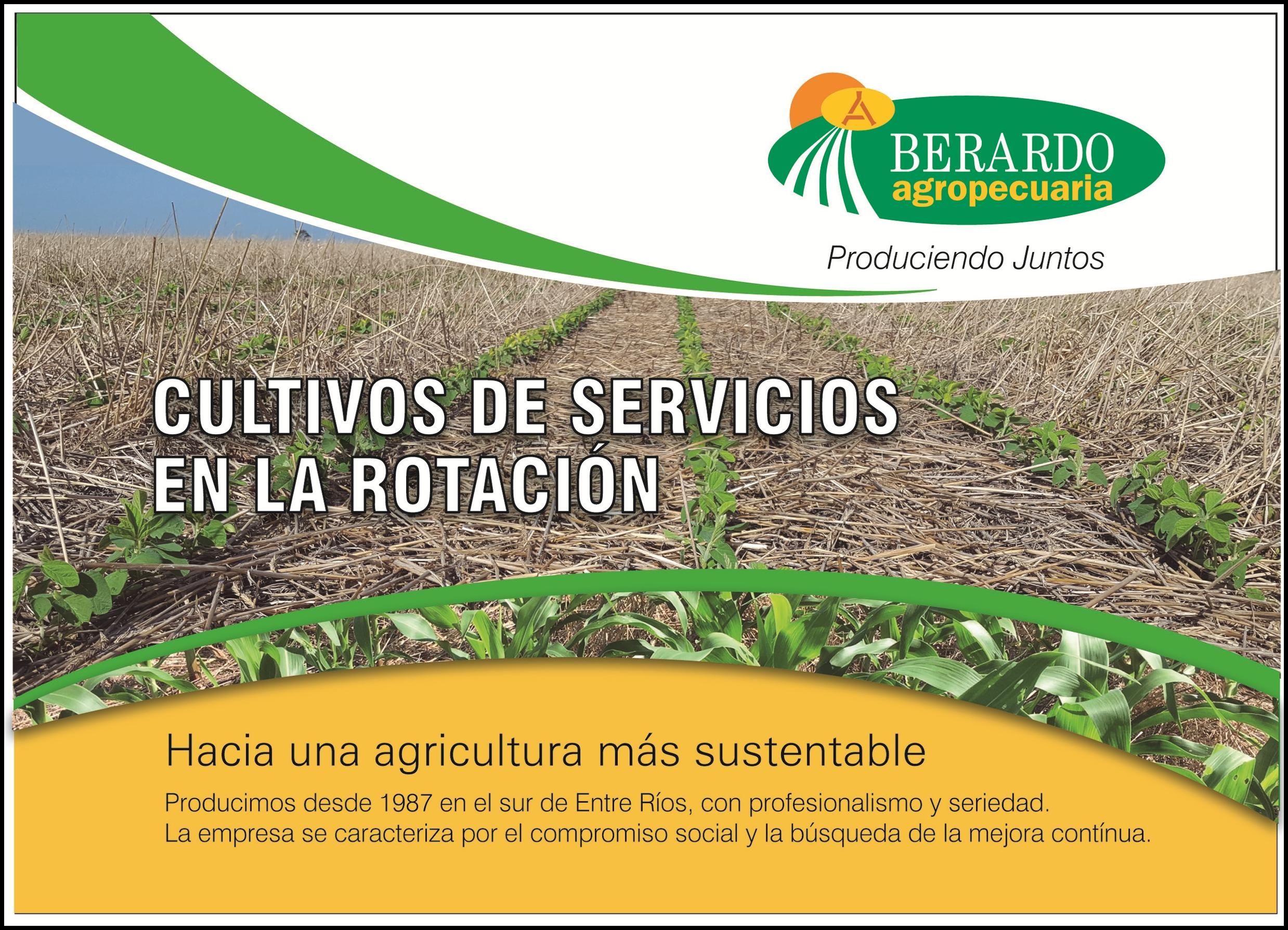 Cultivos De Servicios: Hacia Una Agricultura Más Sustentable